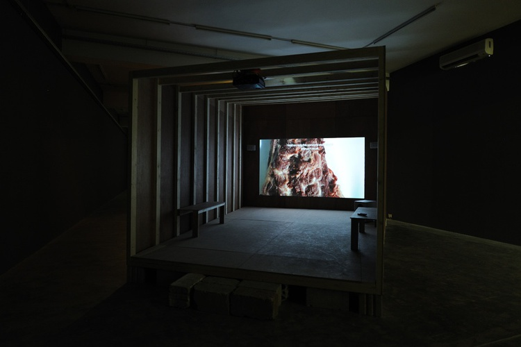 "Mounira Al Solh, Now Eat My Script, 2014. Installation view, HD video with color and sound, 24'50""."