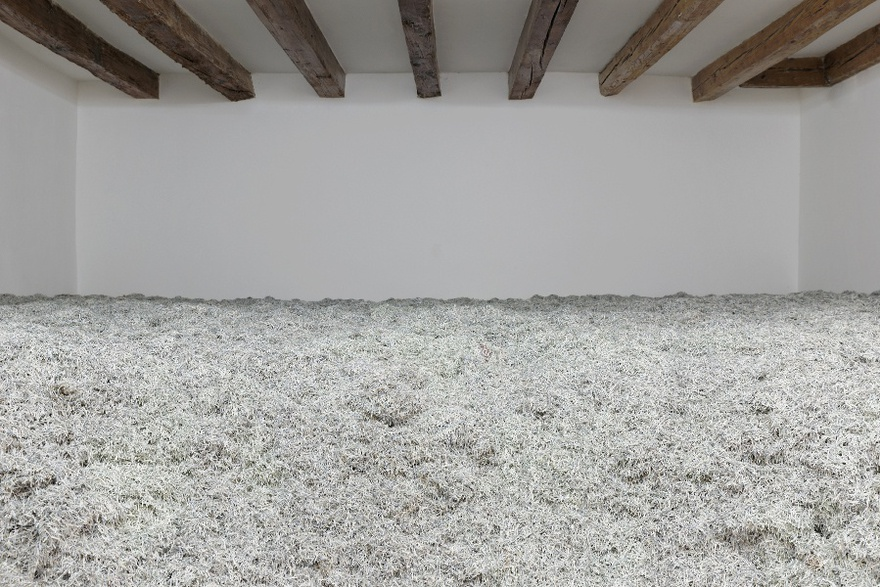 Christosdoloulos Panayiotou, Two Days After Forever, The Cyprus Pavilion at the 56th Venice Biennale. Curated by Omar Kholeif.